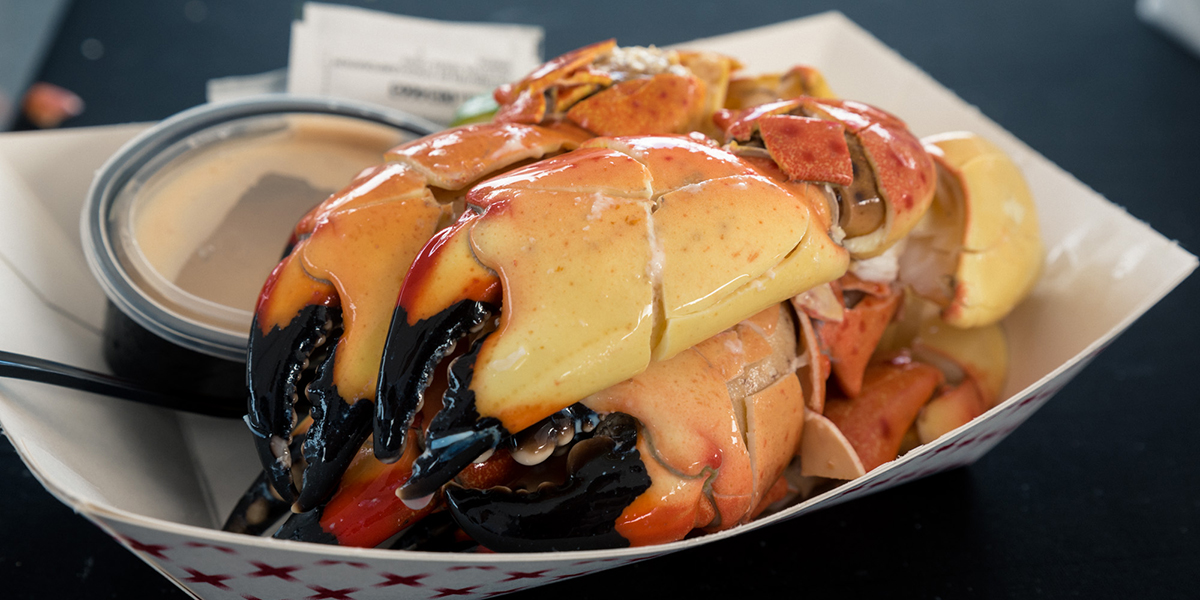 Stone crab from Miami Florida | 9 Mouth Watering Eats at Miami's Best Seafood Festival